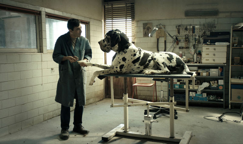 A still from 'Dogman' by Matteo Garrone
