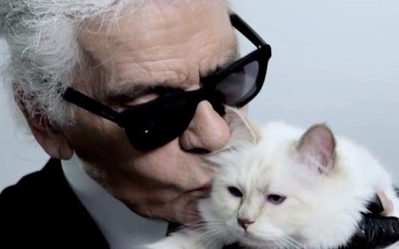 Lagerfeld with his beloved cat Choupette, now a multimillionaire