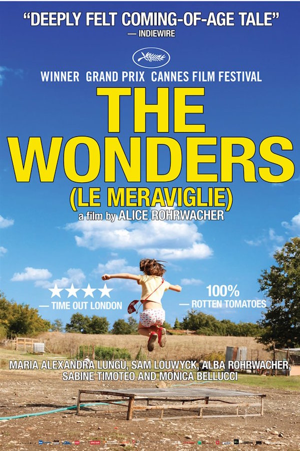 Poster for The Wonders