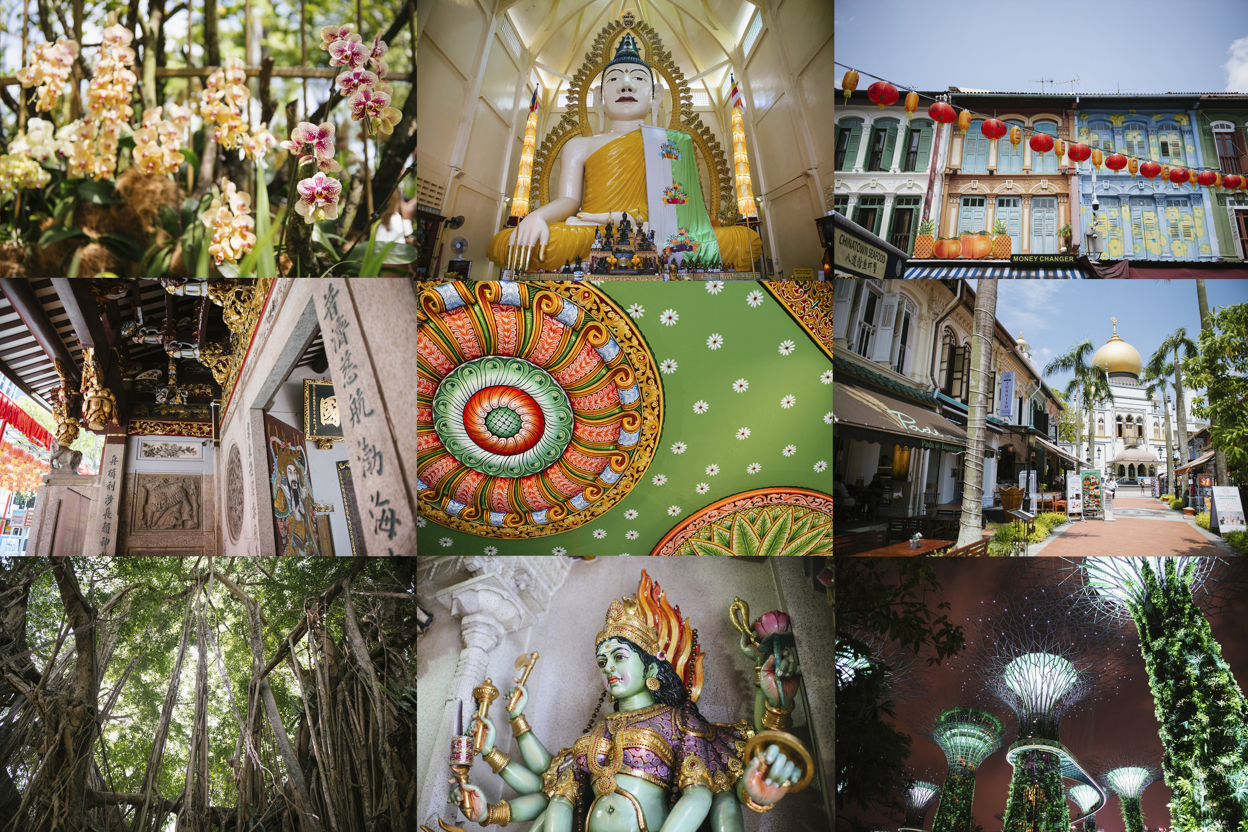 Cultures, histories, colour, food, Singapore is fab!