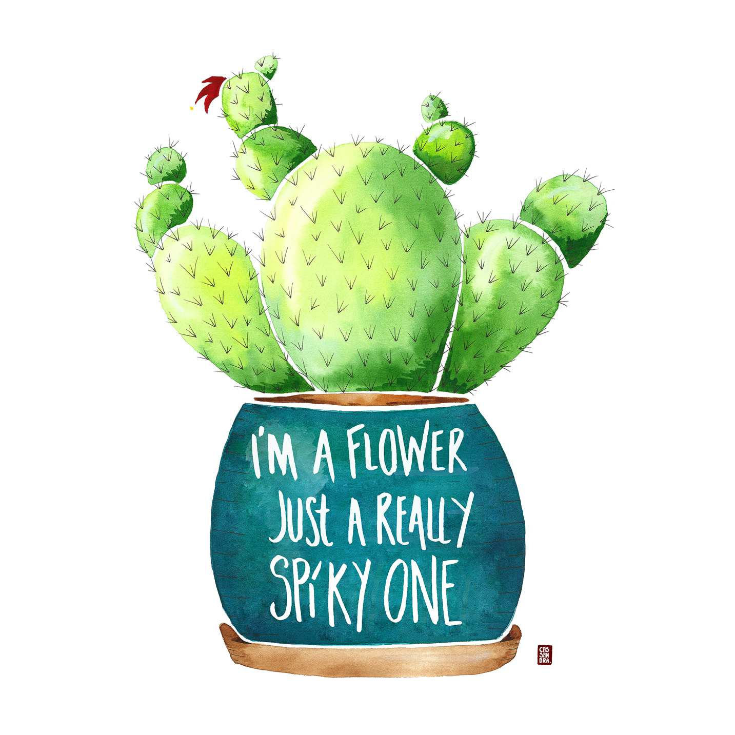 I'm a flower just a really spiky one!