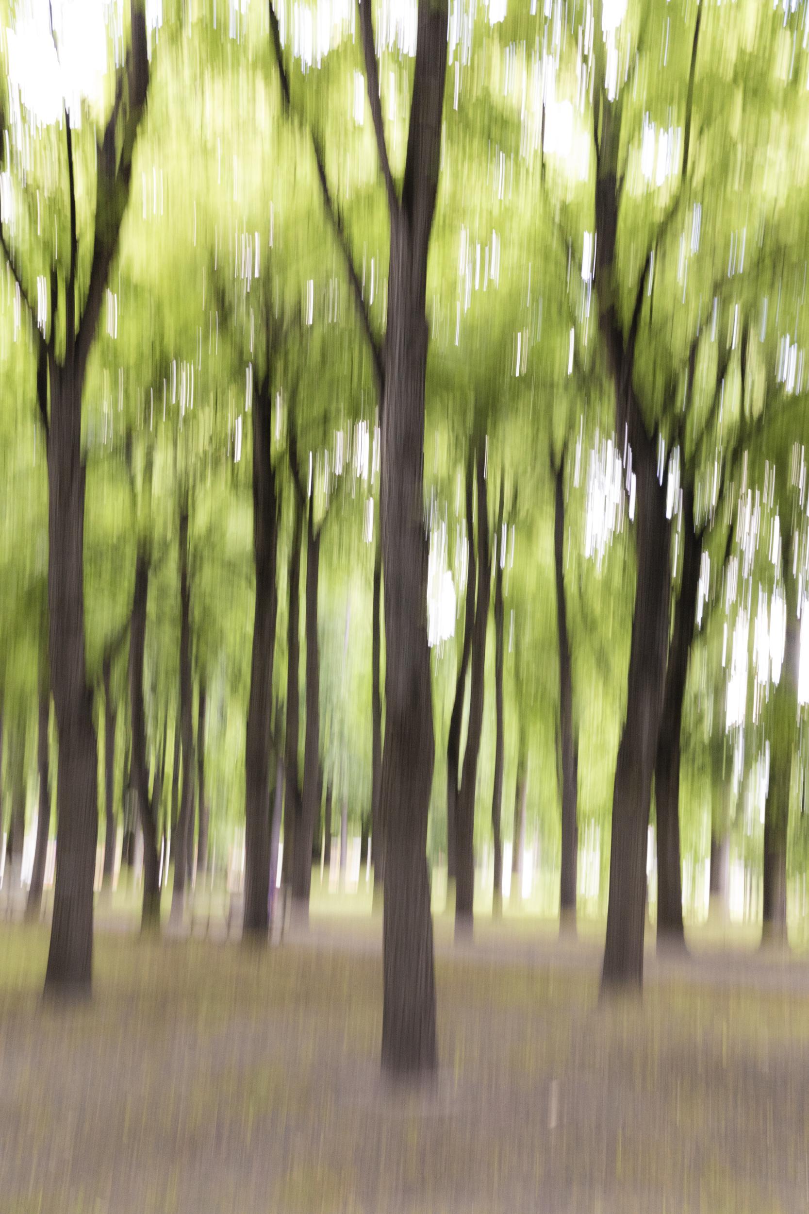 1_park_warsaw.jpg