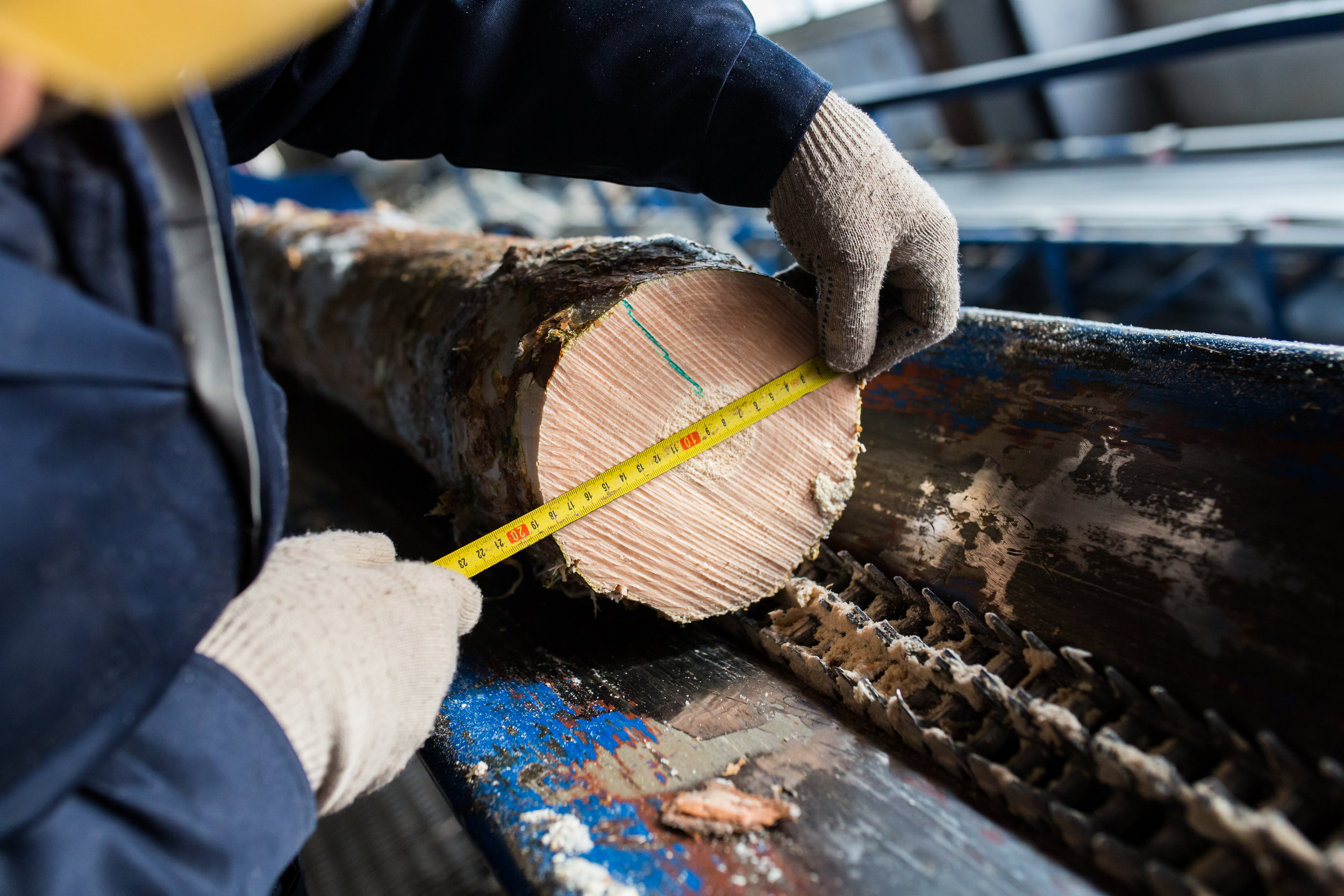 Timber measurement