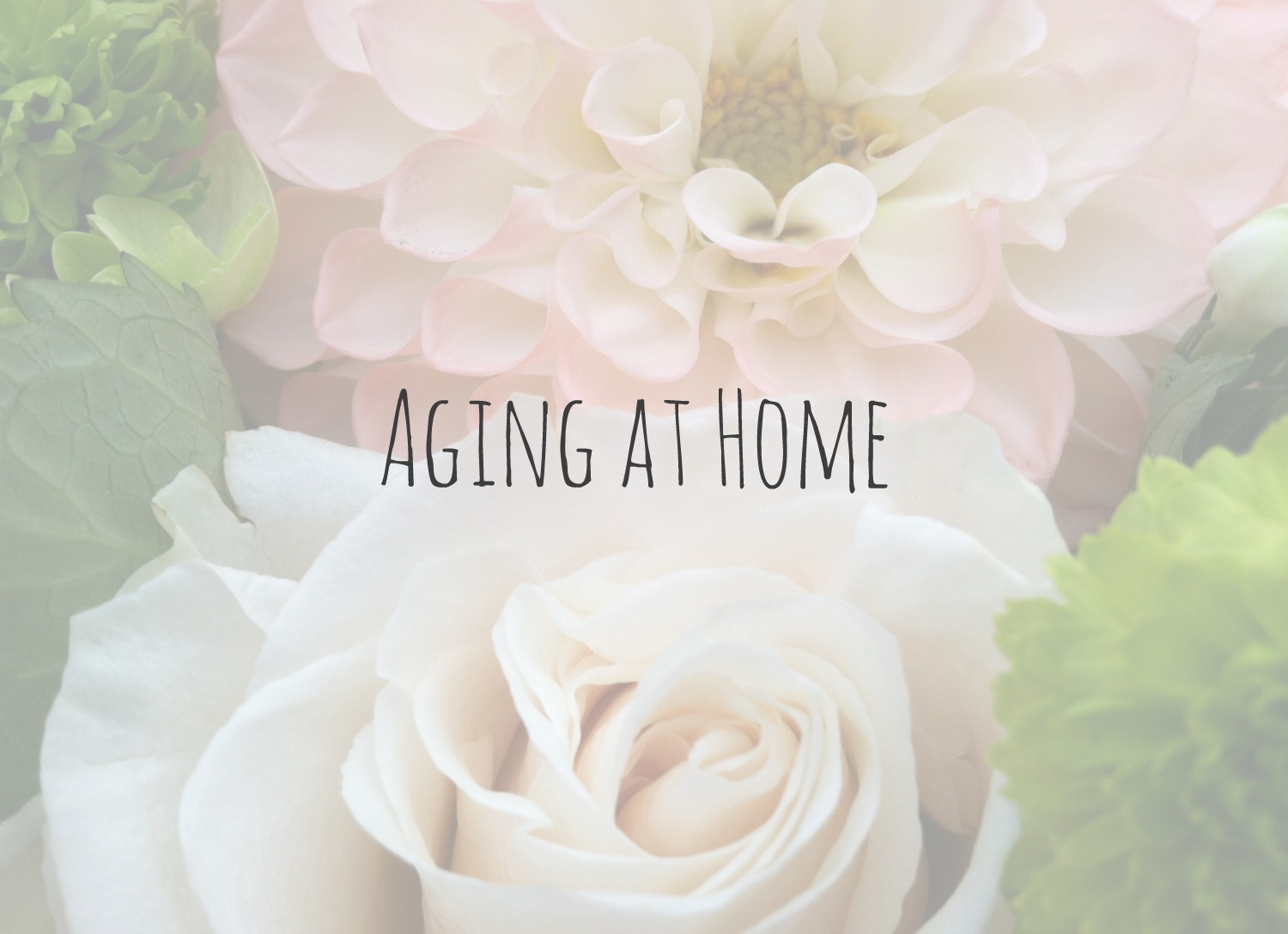 Aging at Home 2.jpg