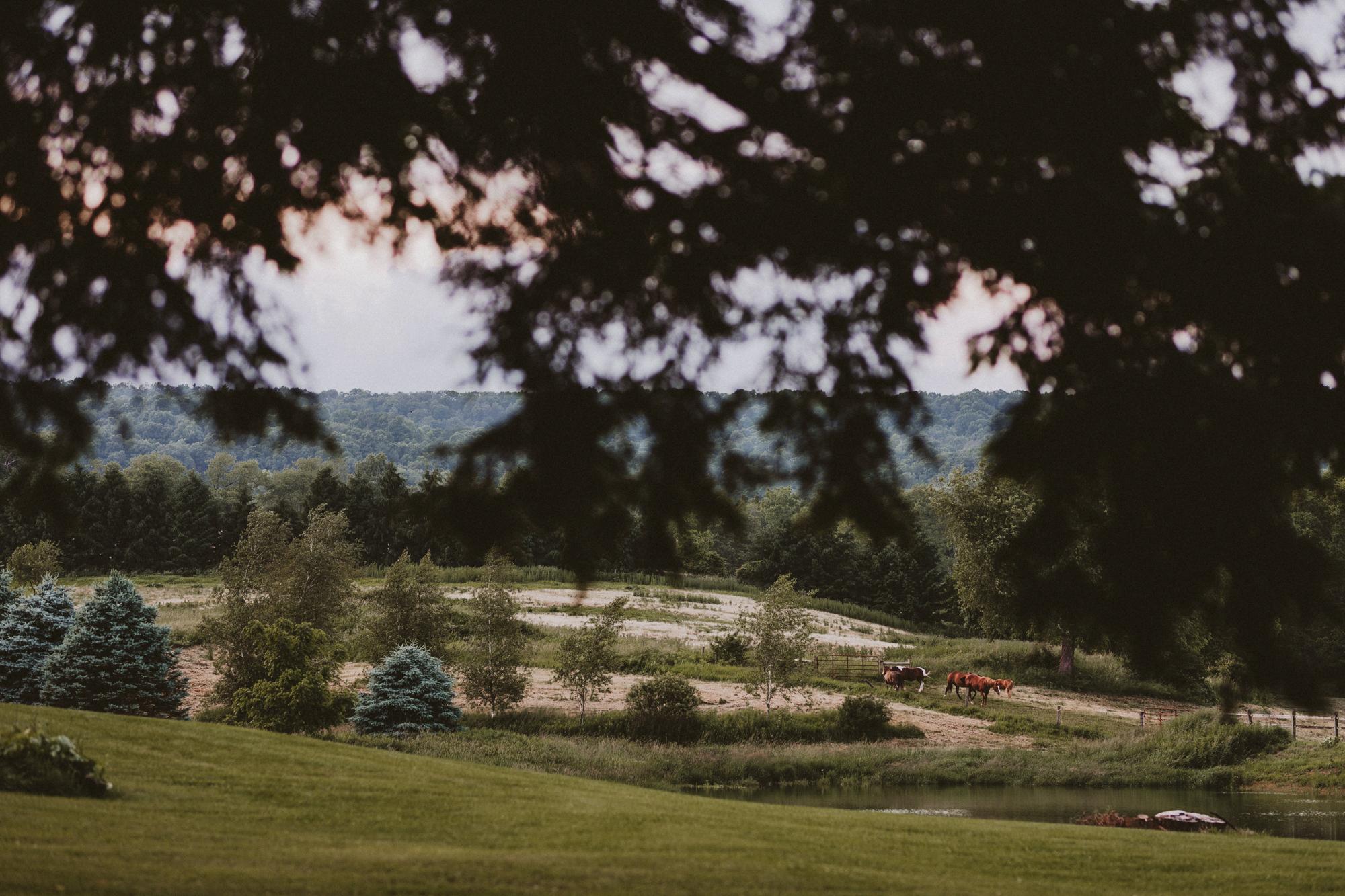 Hot Metal Studio Gillbrook farms wedding photography-158.jpg