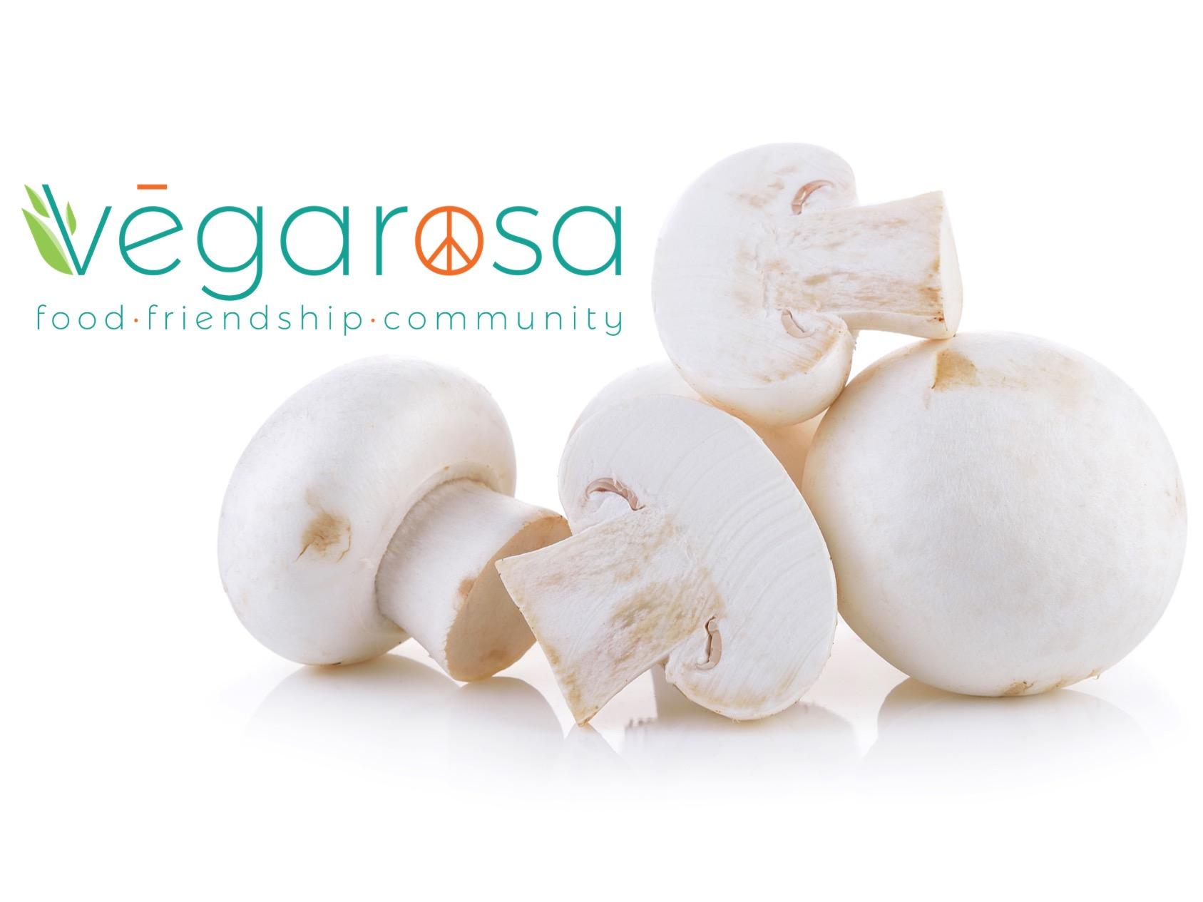 logo with mushrooms 2.0.jpg