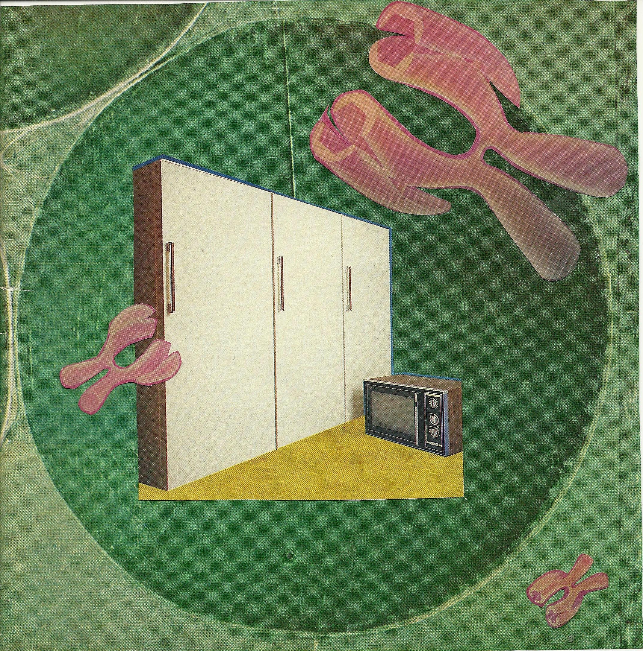 appliance date.jpeg