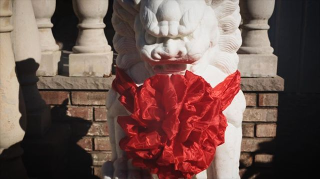 This lion got all dressed up to welcome the bride and groom to their tea ceremony🎀🦁❤️🧧🍵🍵