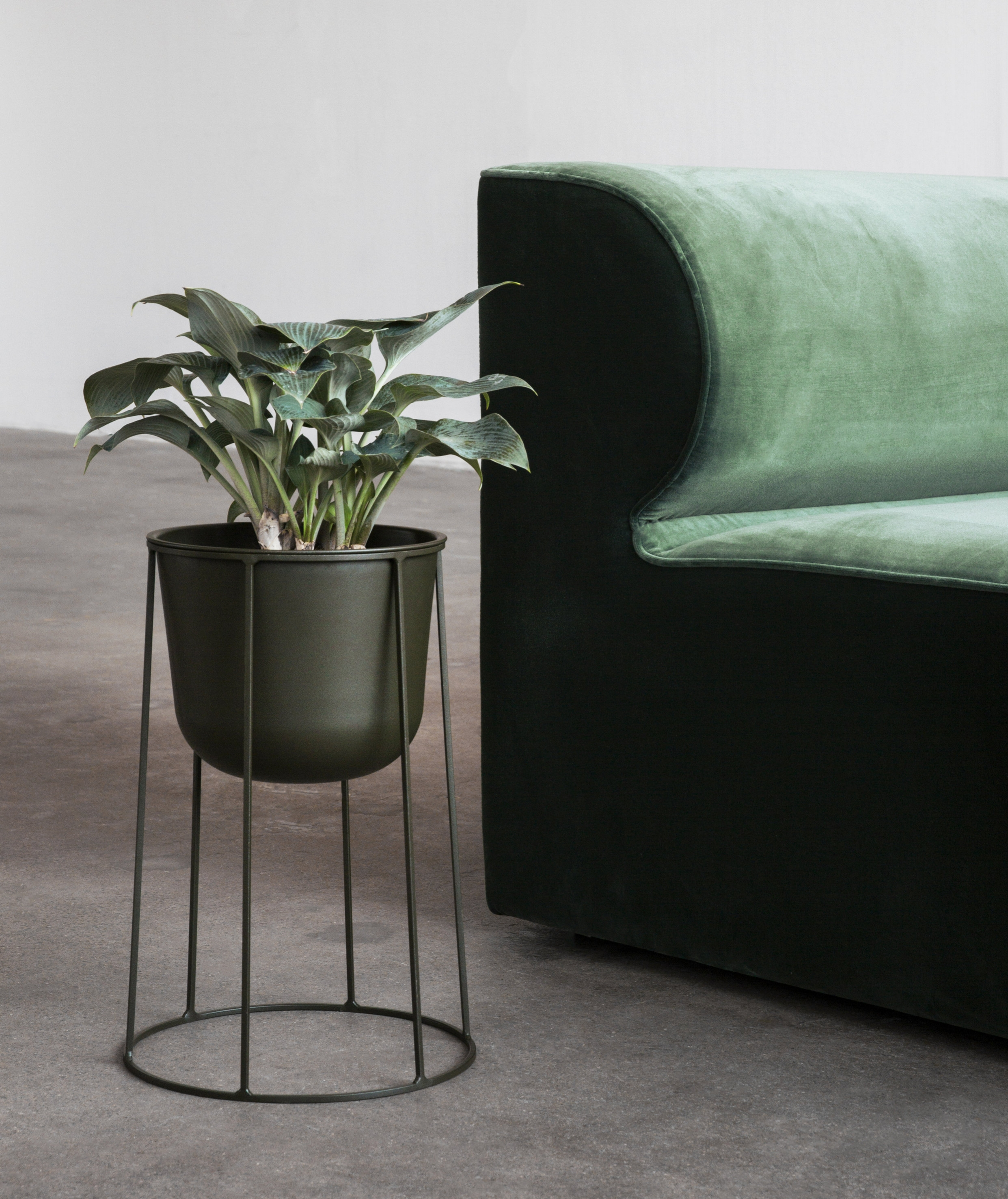 Wire pot in Olive green