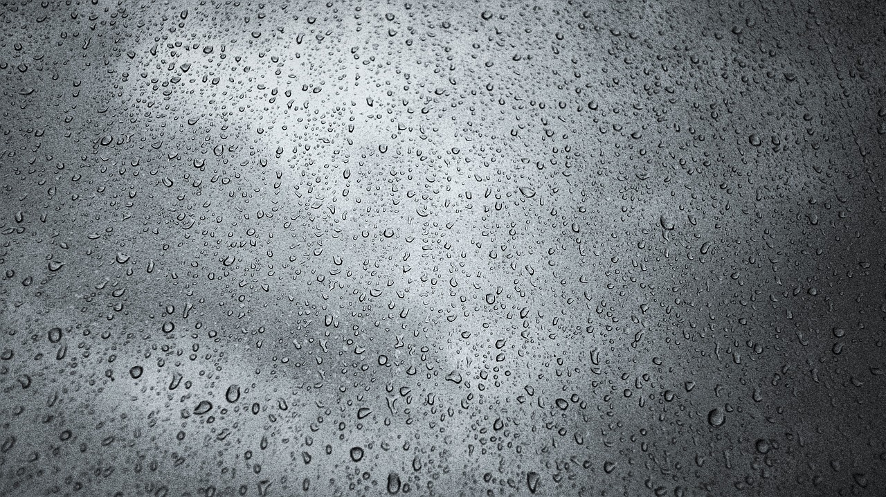 Drizzle Trips -