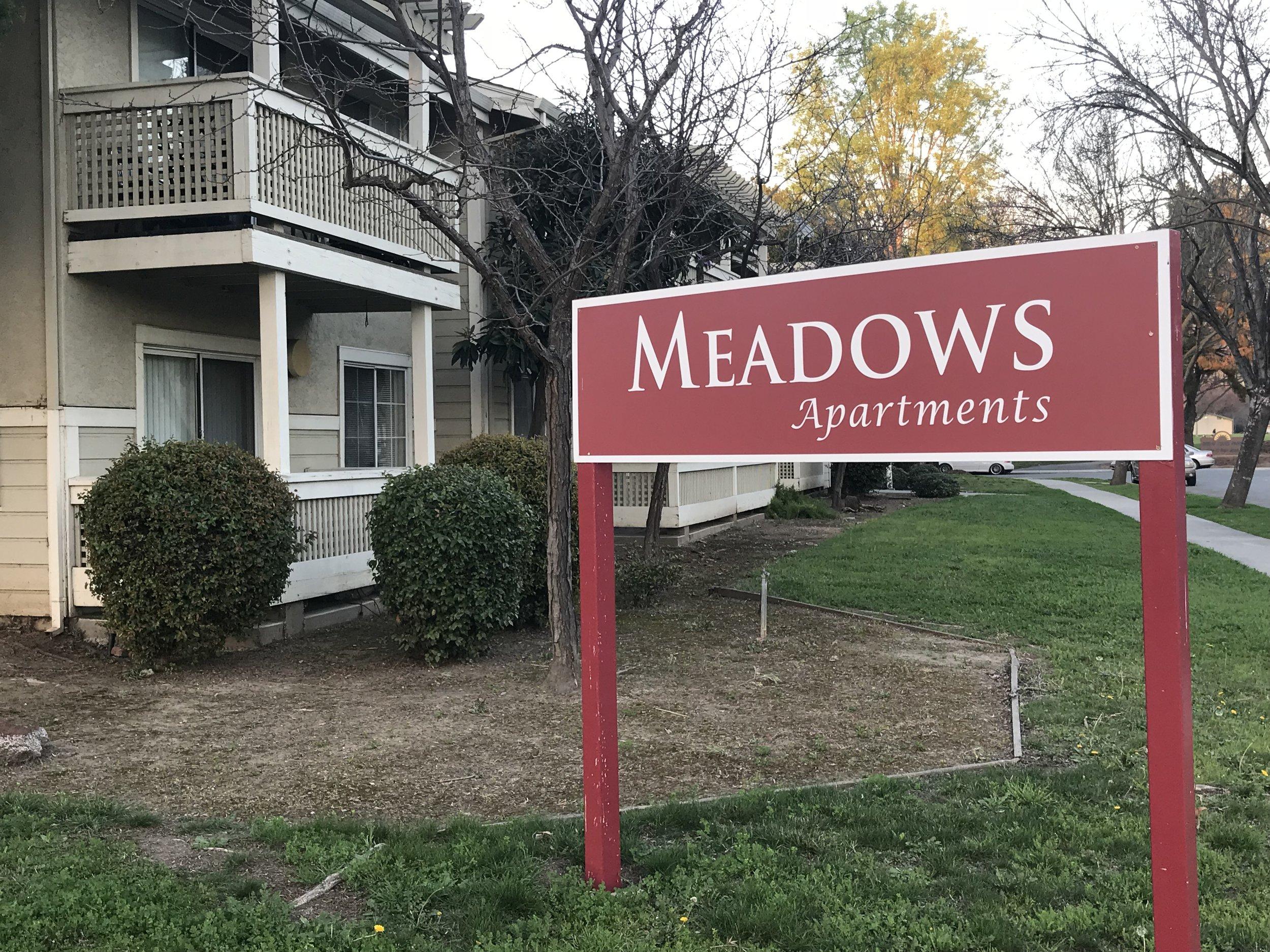 Meadows 1A.JPG