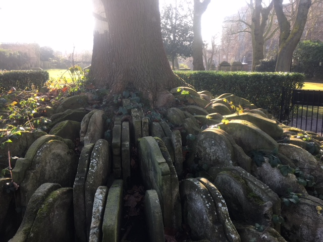 The Hardy Tree, St Pancras Churchyard, London