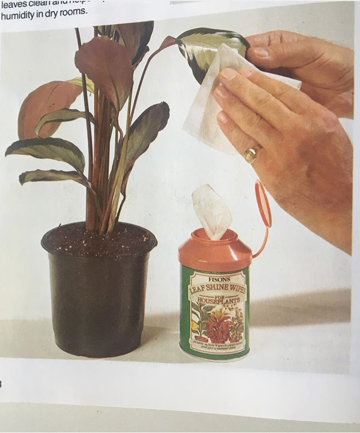 Found Plant Manual