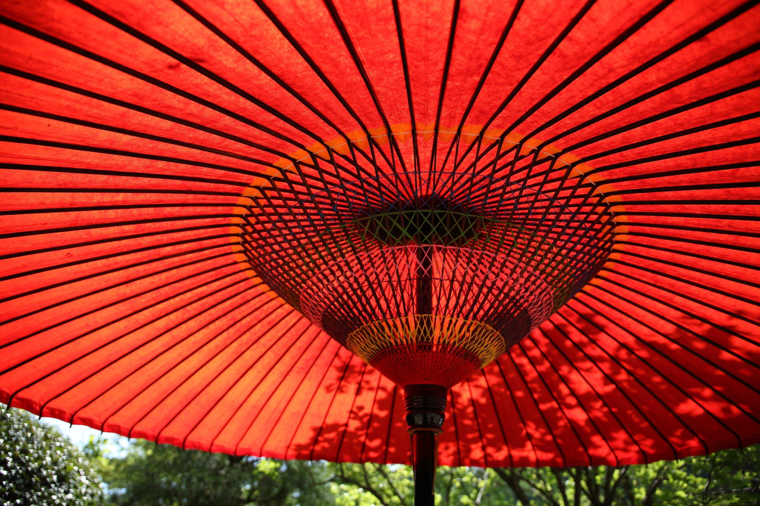 Hawaii Umbrella Insurance - Cavanah Associates