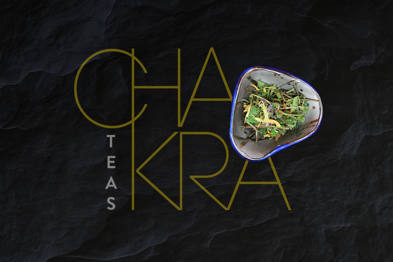 Qigong Chakra header image.png