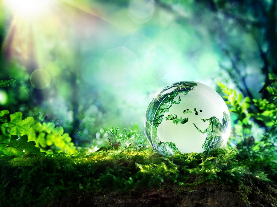 Bénéfices santé - La recherche des bénéfices santé que nous offre la nature est un cheminement personnel qui doit germer en chacun d'entre nous. En revanche, dans un monde digital, toutes ces connaissances sont désormais accessibles à tous ceux que cela intéresse.En savoir plus