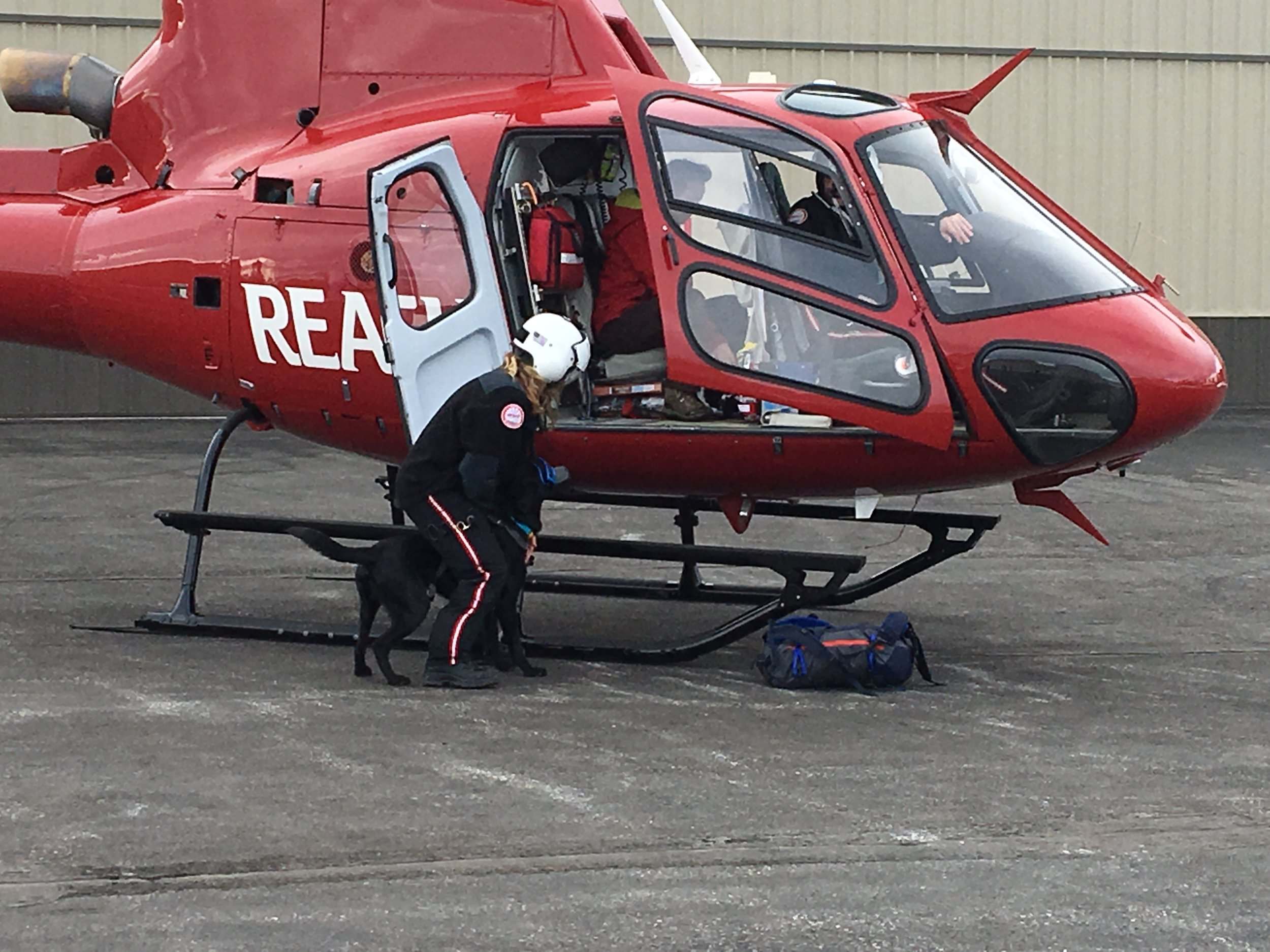 K9 Yodel loading into the helicopter
