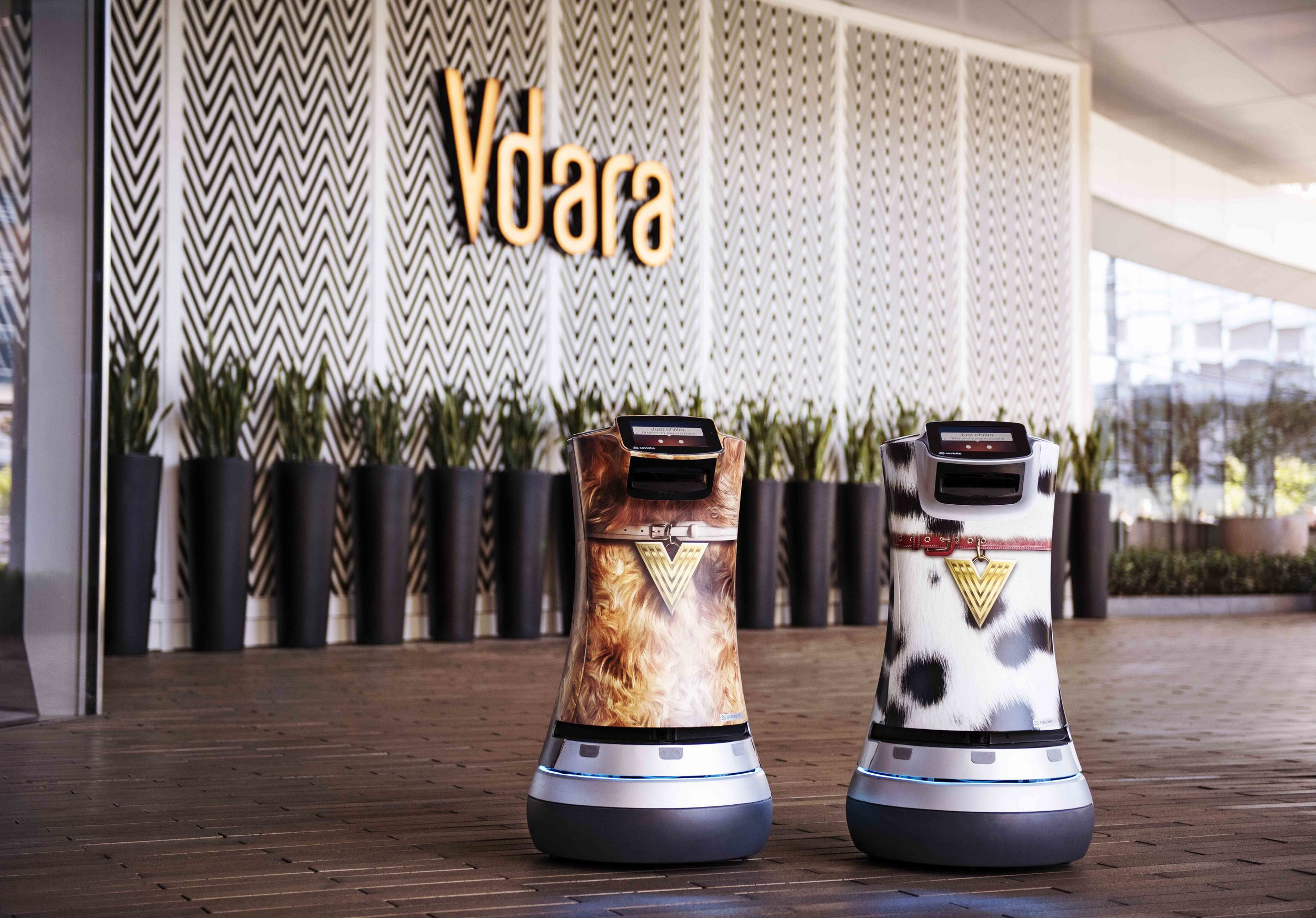 Fetch and Jett at Vdara Suite Hotel & Spa at Las Vegas
