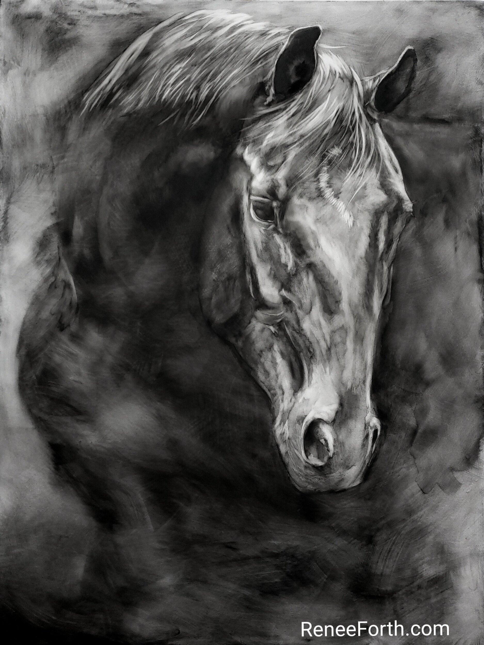 "Expressive black and white horse portrait. ""Sweet Entreaty"", 40""x30""x1.5"", Copyright Renee Forth-Fukumoto"