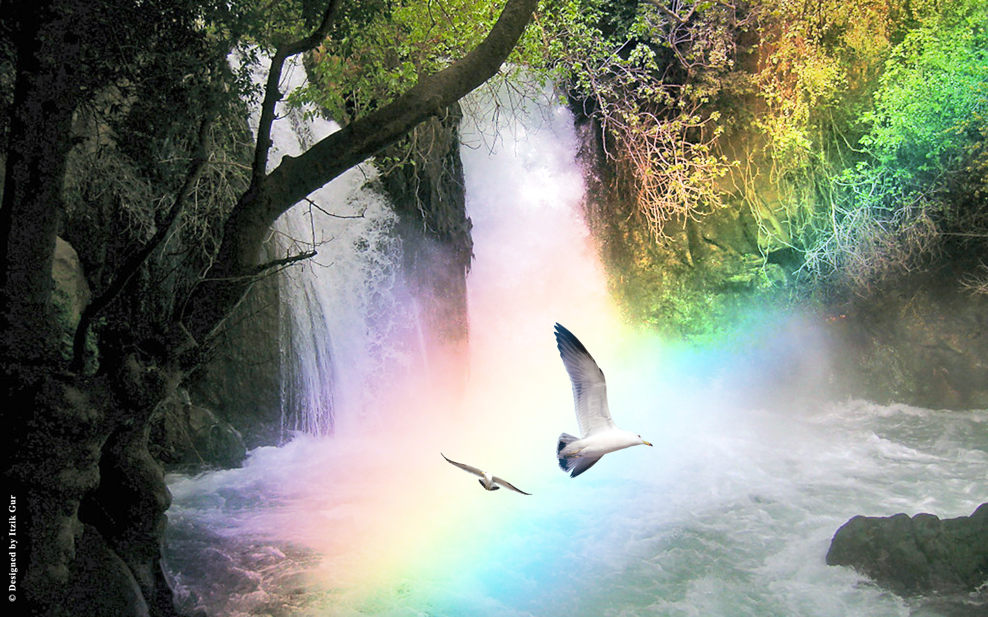 rainbow water.jpg