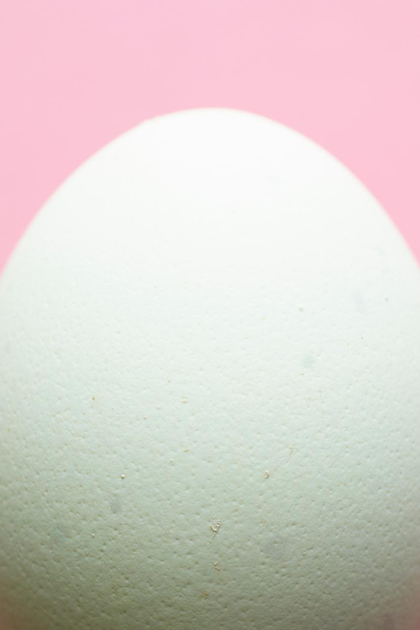 Eggs69616.jpg