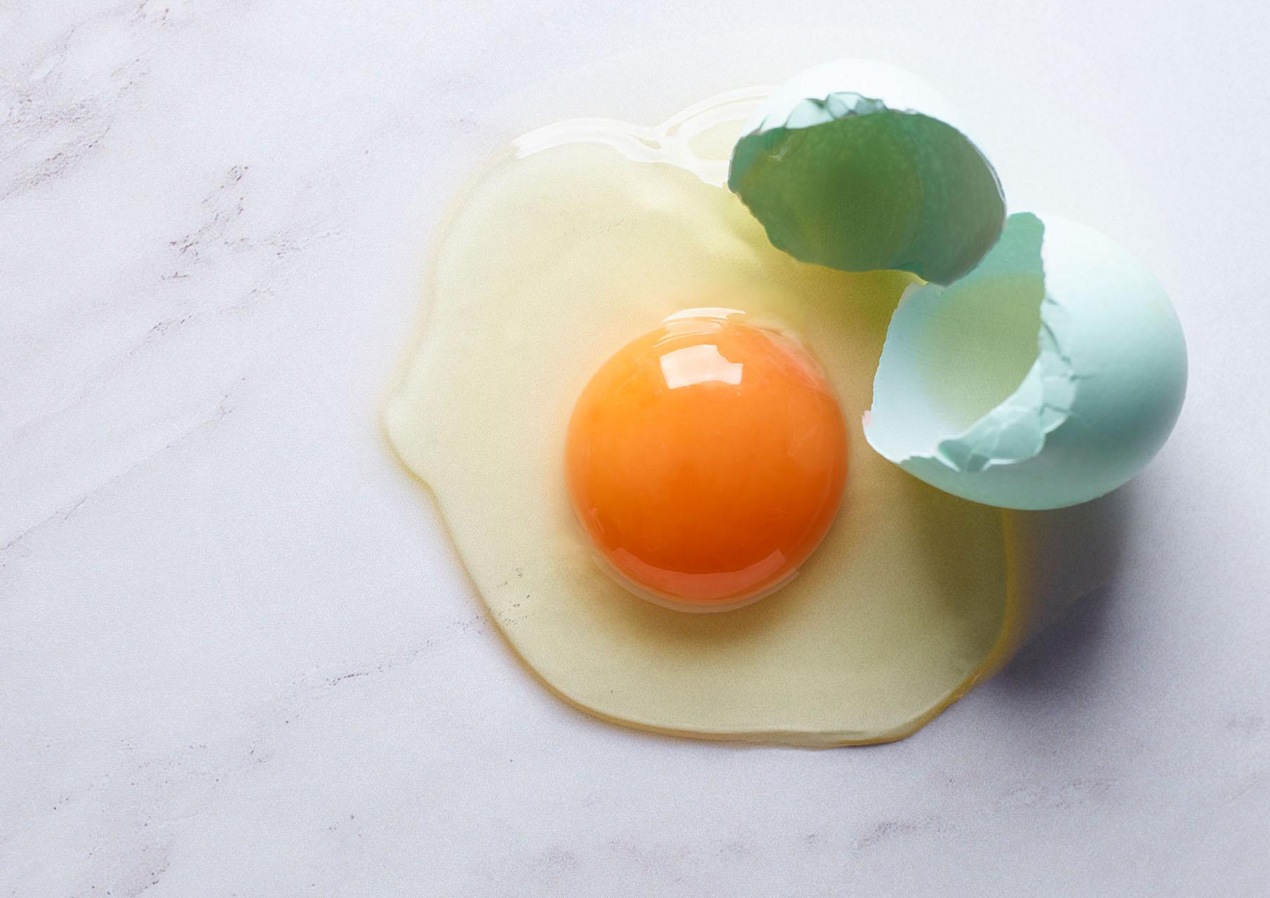 Eggs69871.jpg
