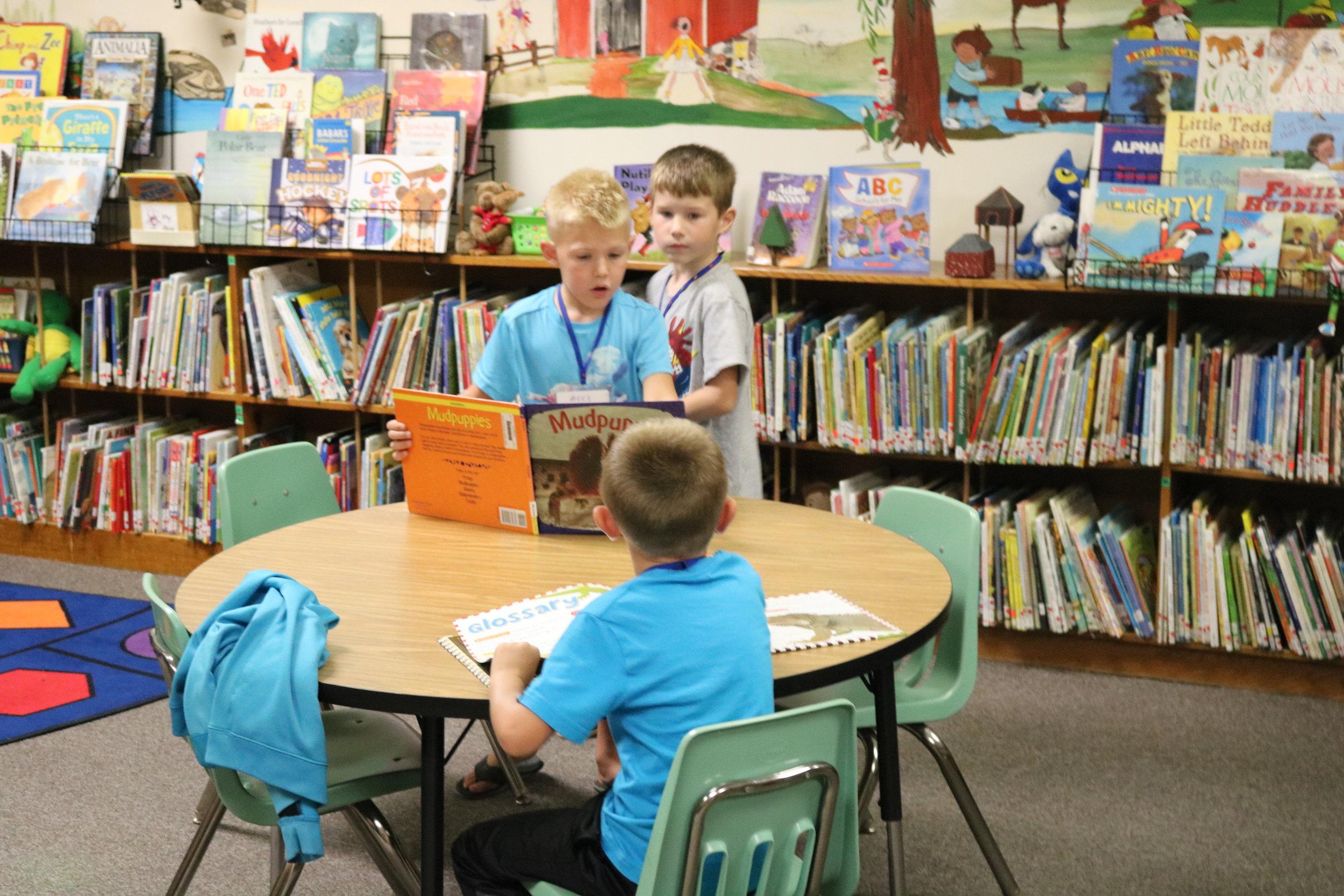 Preschool Enrollment -