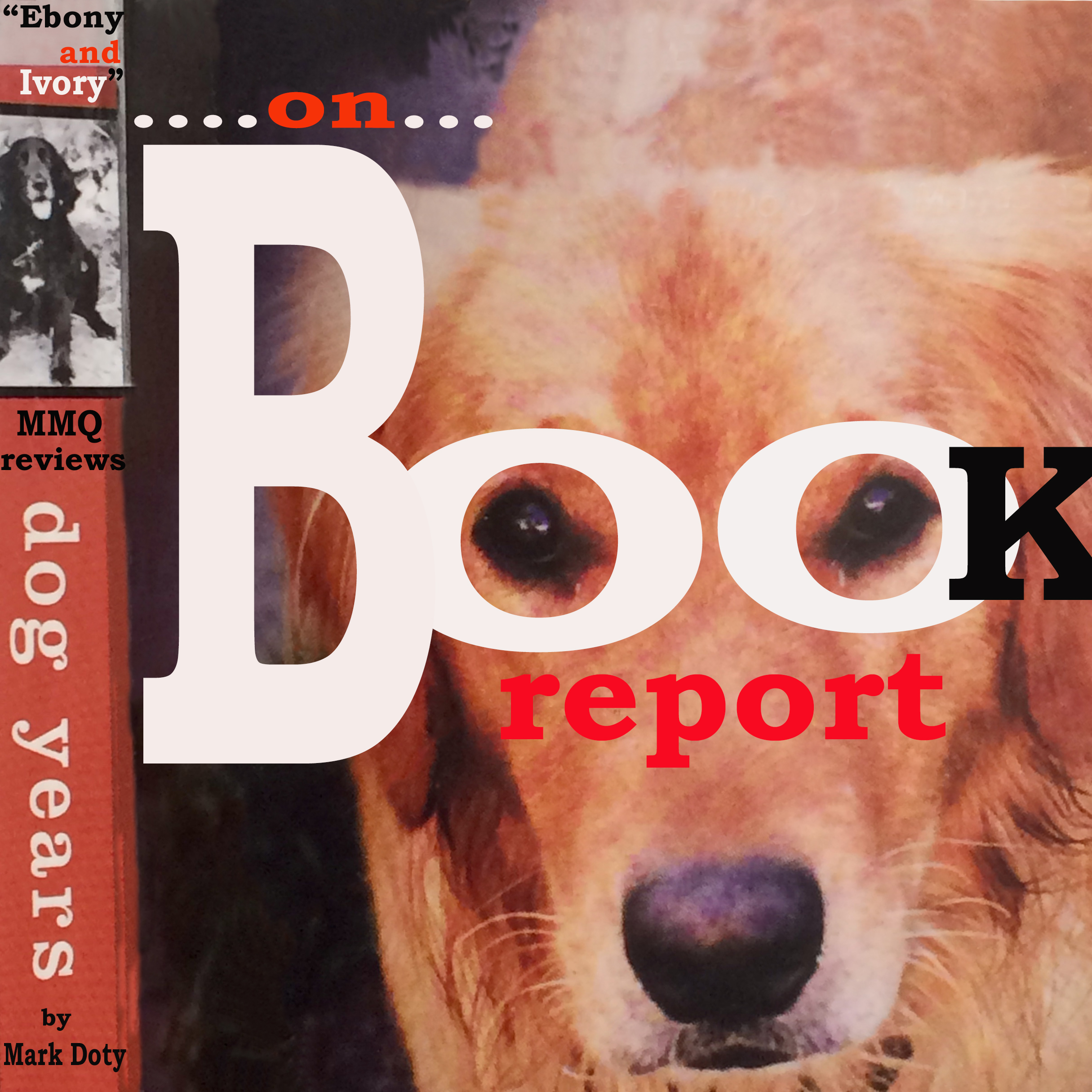 Review of Dog Years by Mark Doty