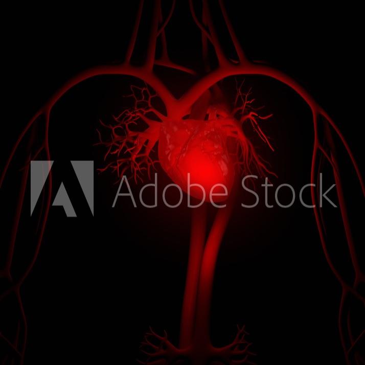 Heart+Preview+1.jpg