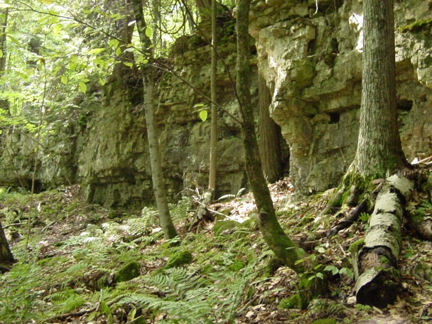 Visit Peninsula State Park or any of the many other State Parks in Door County.