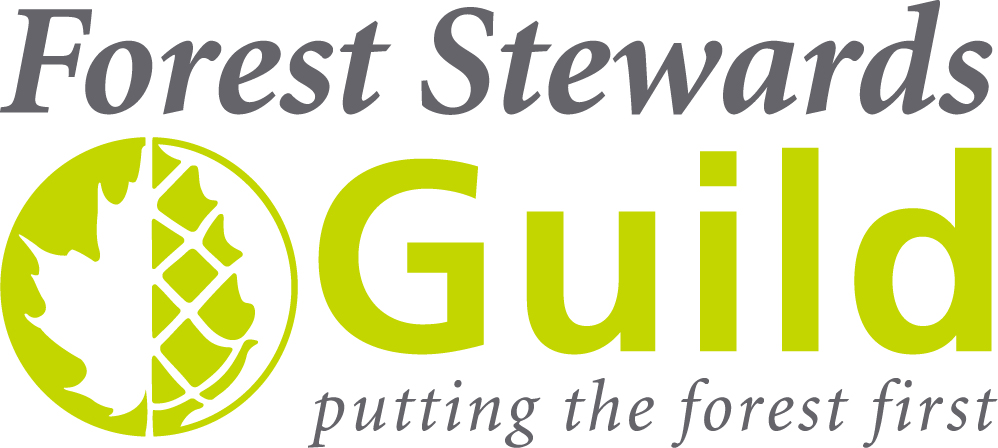 FSG_Logo_RGB.jpg
