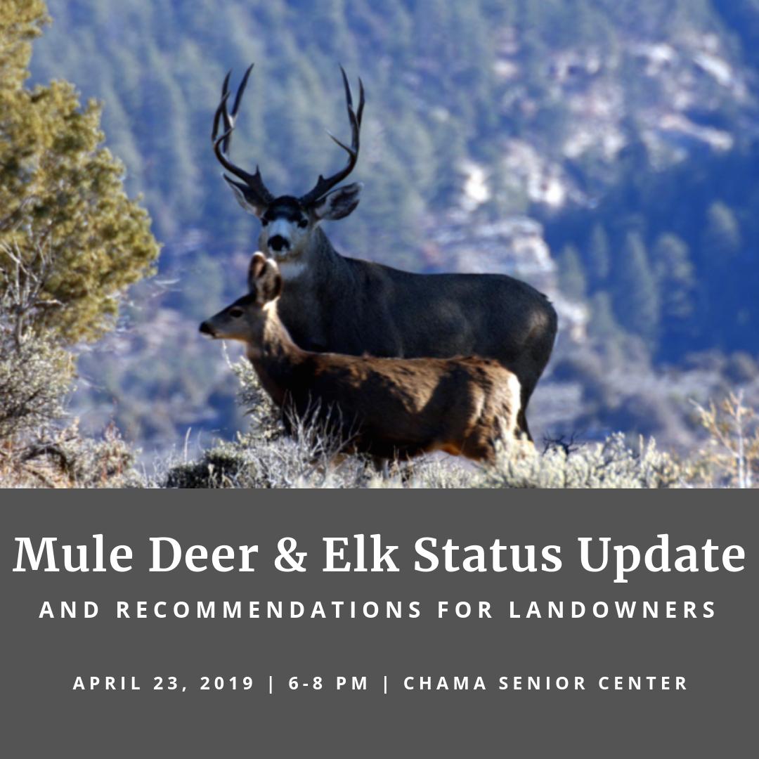 Mule Deer &  Elk Instagram.png