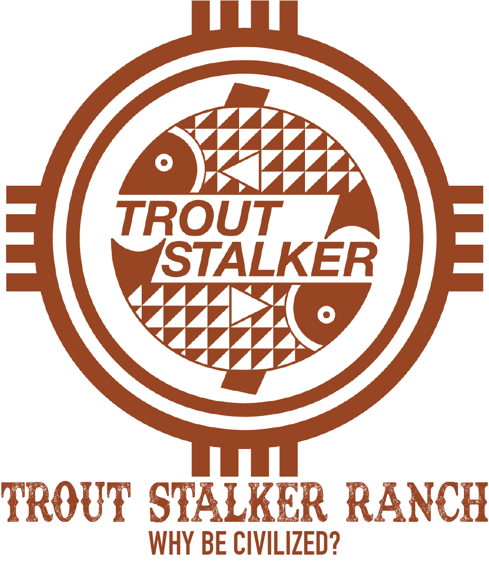 TSR logo with type.png