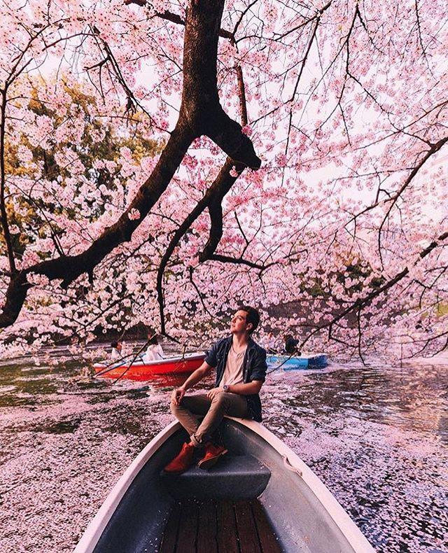 #flowergoals by @jamesrelfdyer 🌸👌🏼👌🏼