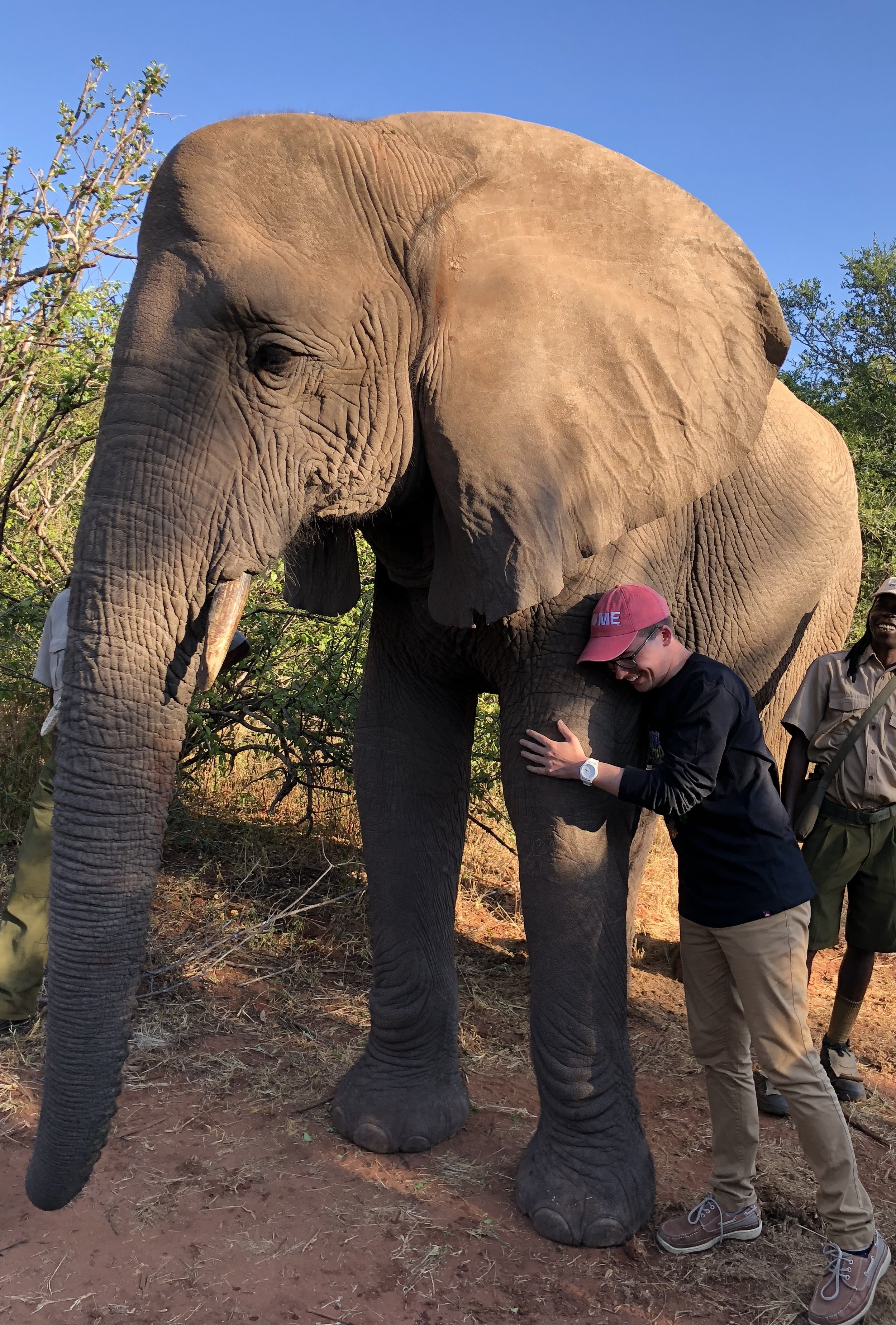 Cameron hugs a domesticated elephant in a Zimbabwean wildlife orphanage