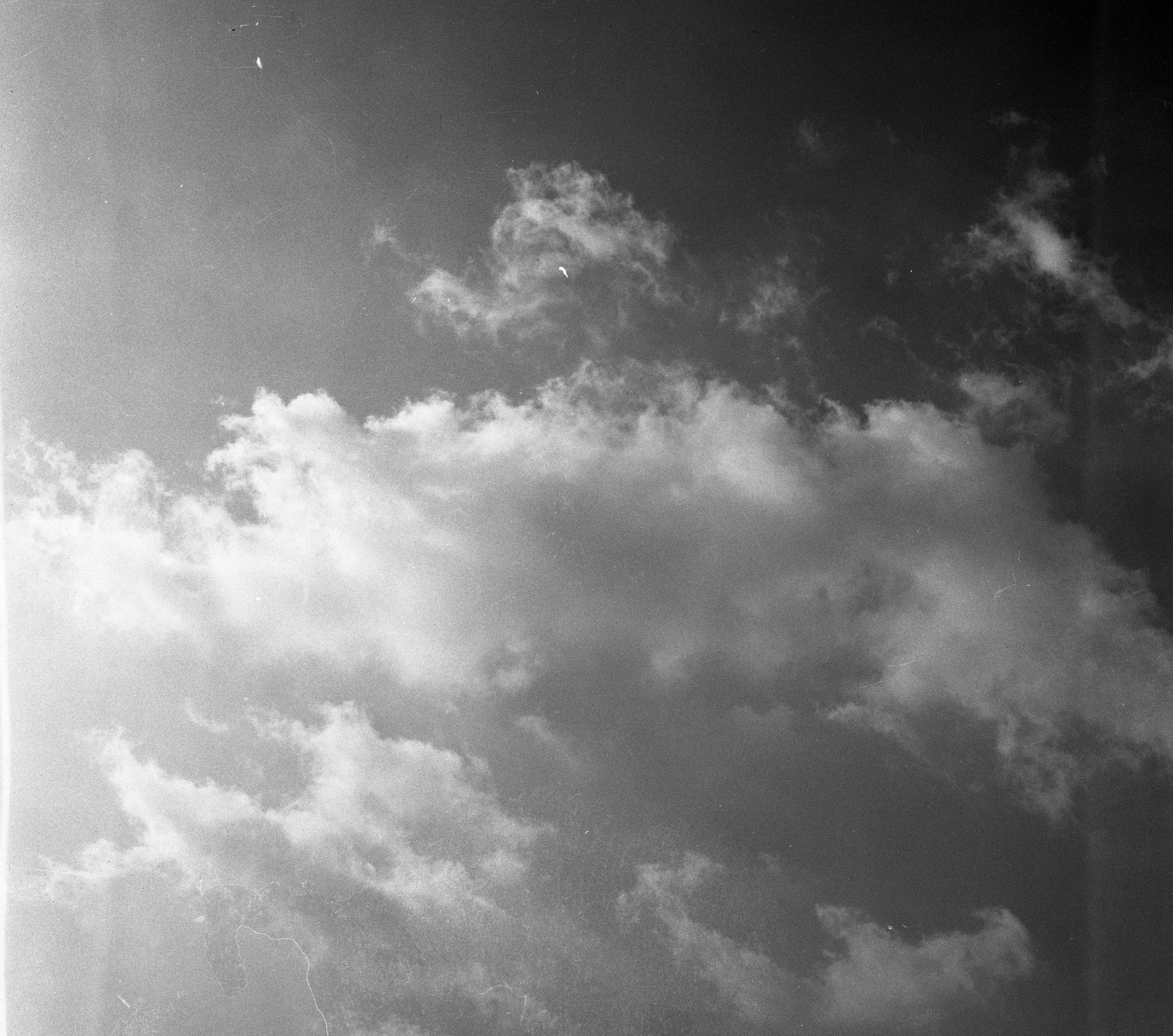 album6_81_5.jpg