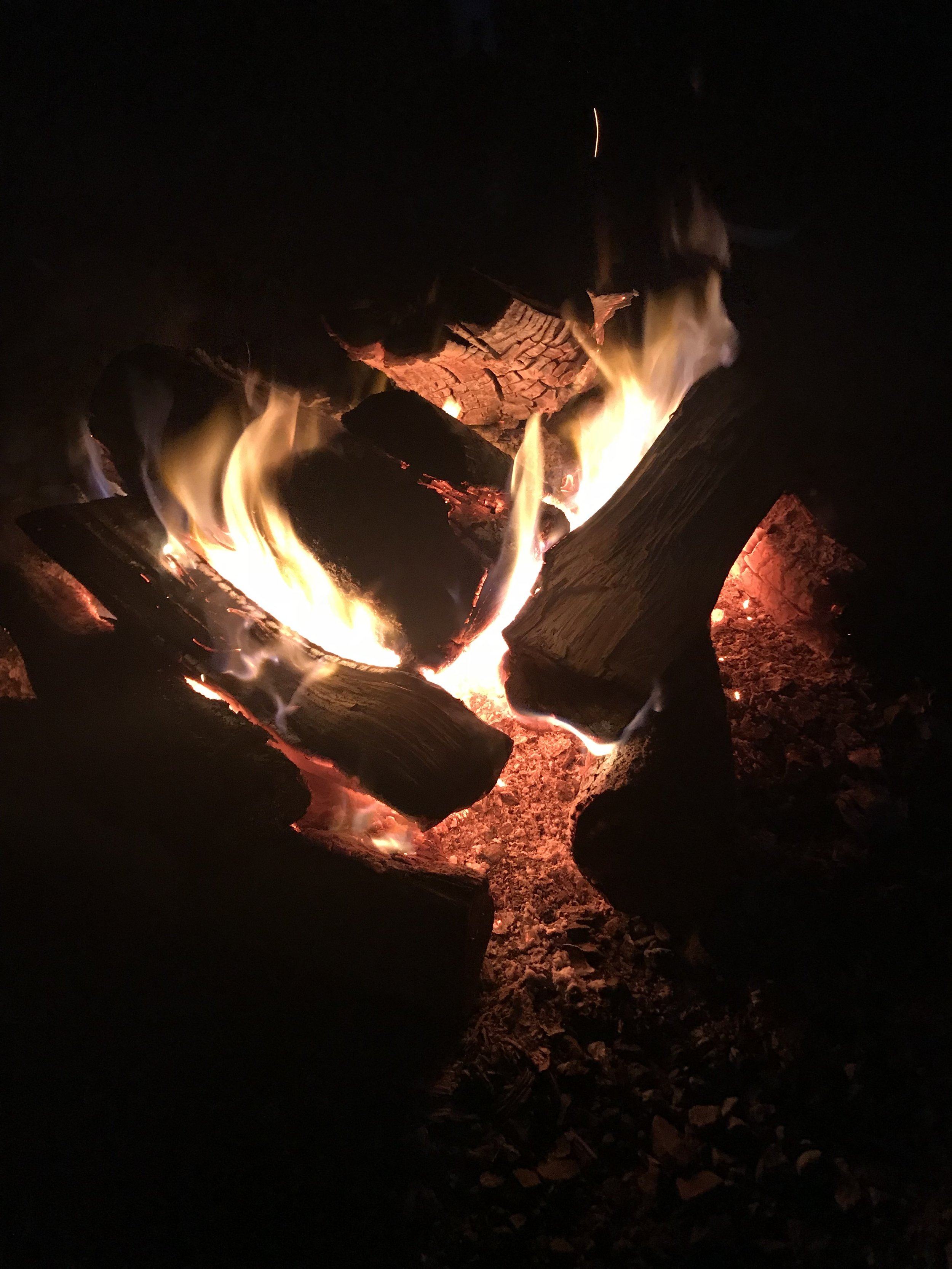 Bonfire Bay Tour Company - Stunning and memorable tours of Ketchikan.