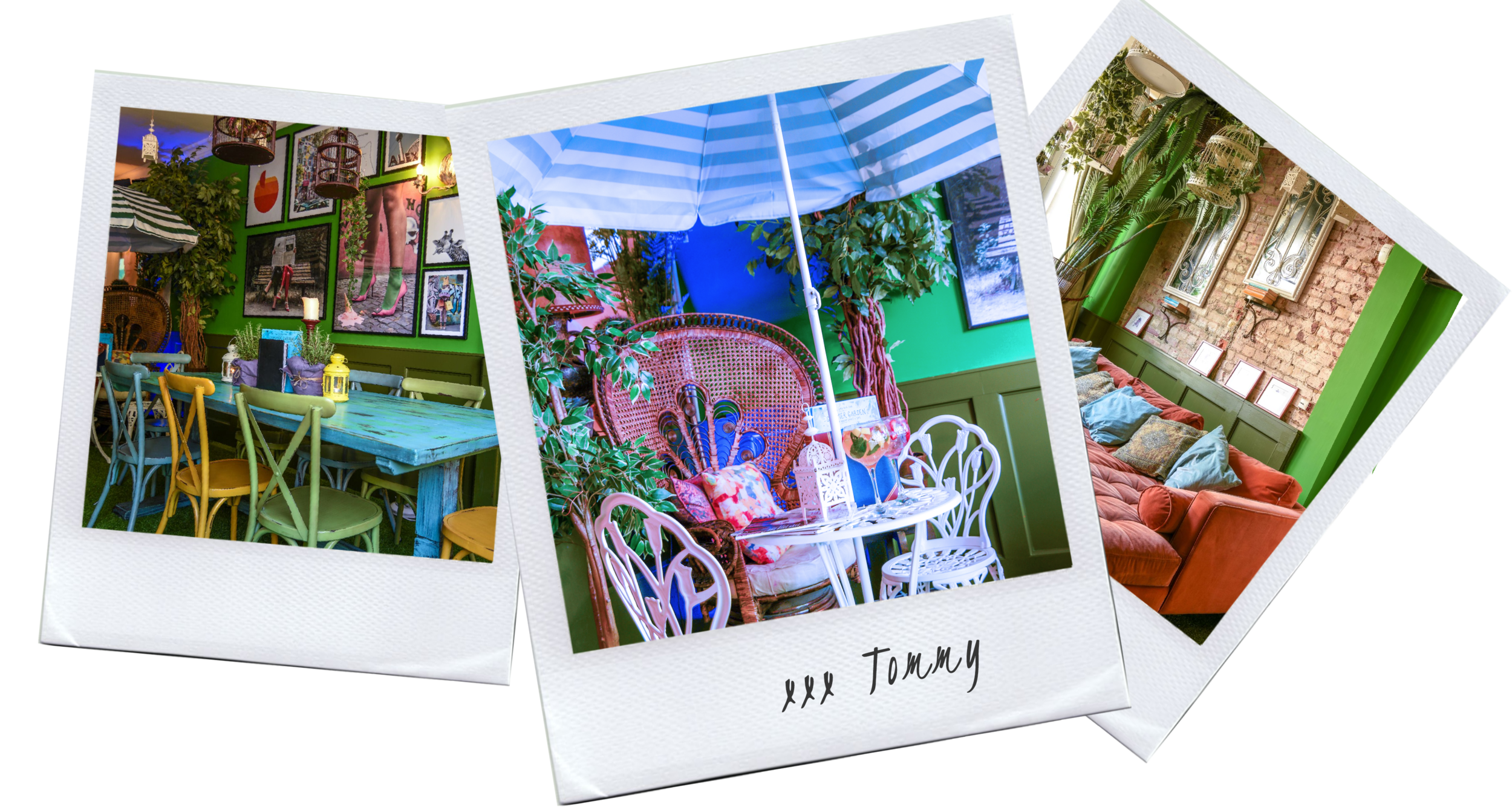 Gin Page Polaroids 2.png