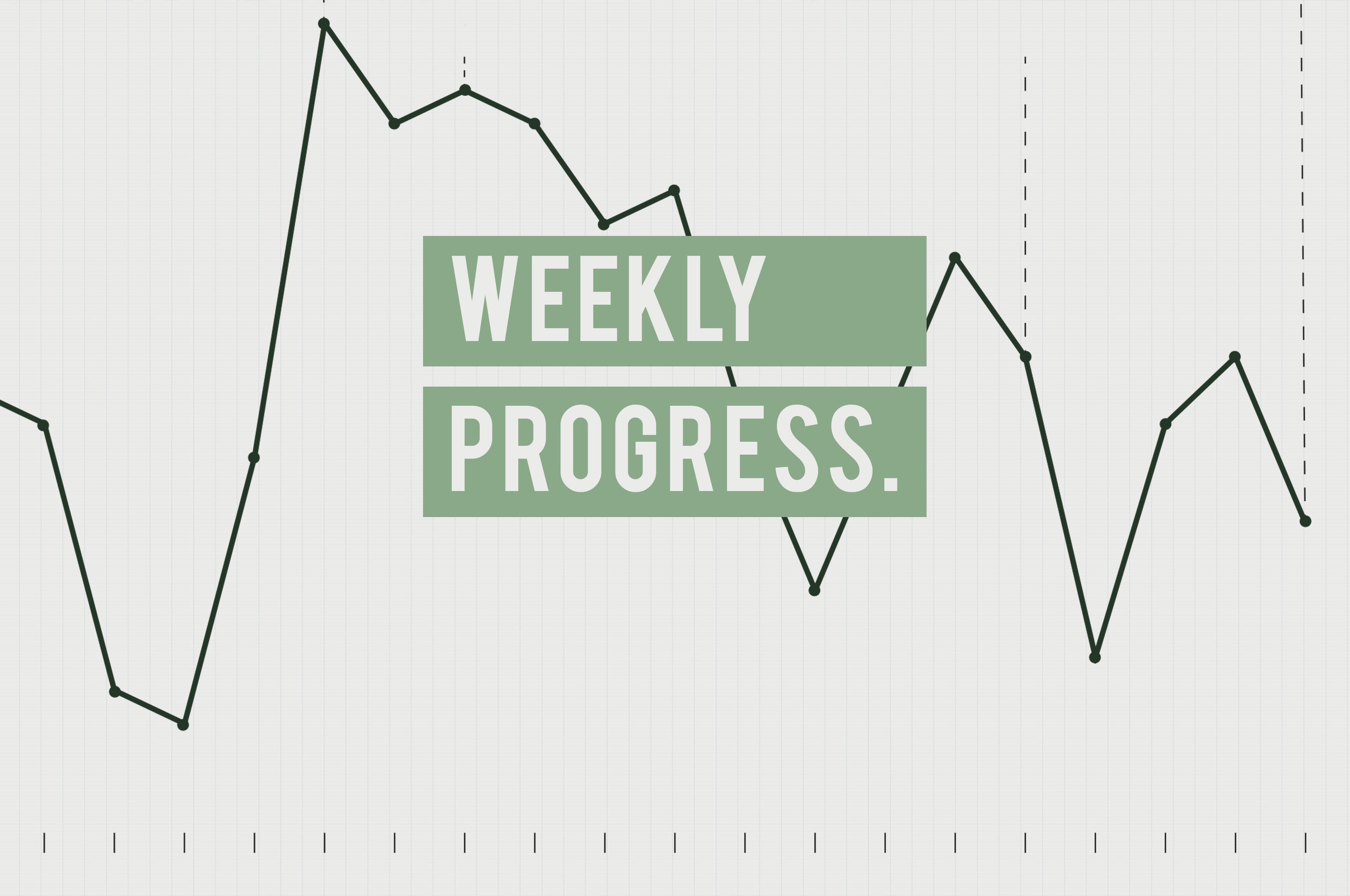 Weekly Progress.jpg