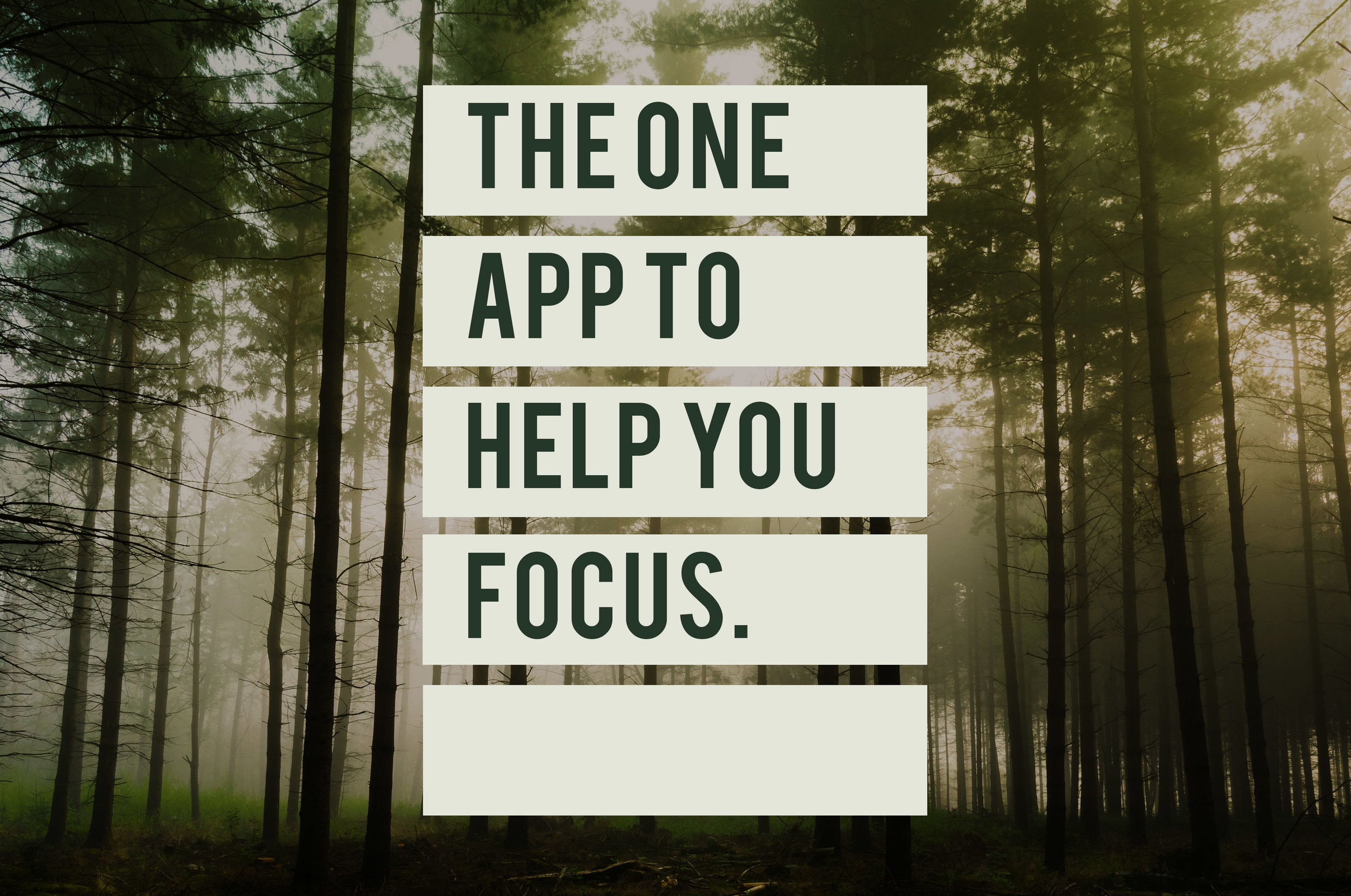 The one app to help you focus.jpg