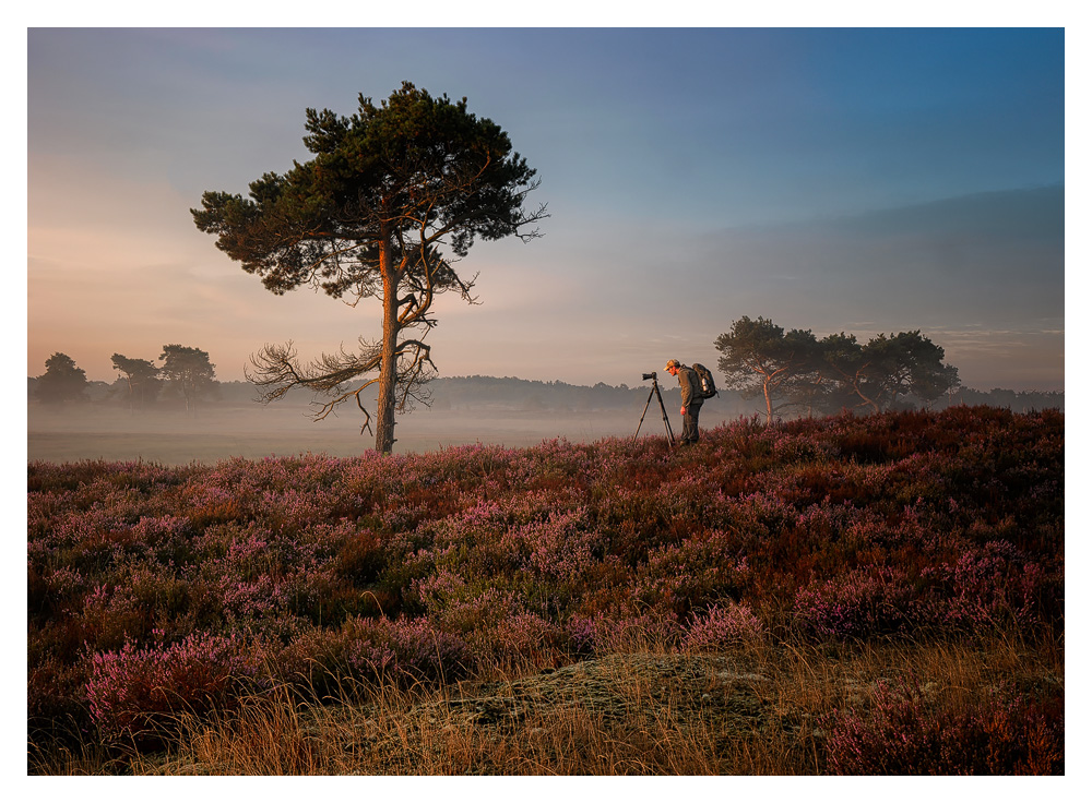 Me on a beautiful morning at the kalmthoutse Heide, photo made by Esmeralda Holman