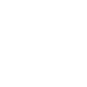 Star white.png