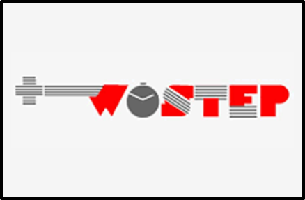 WOSTEP3.png