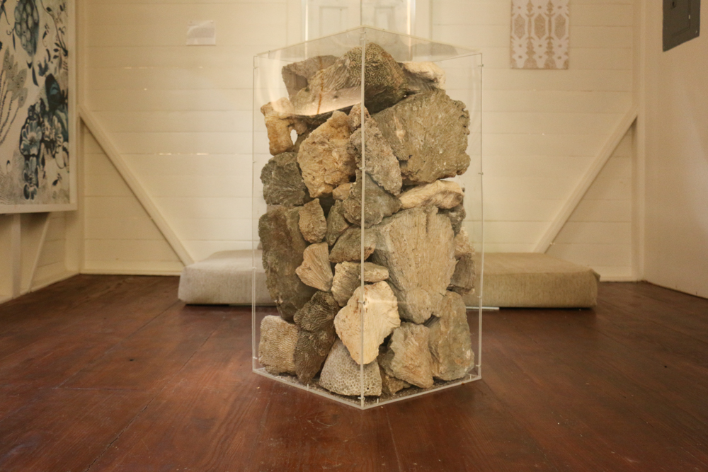 """La Vaughn Belle's """"Trading Post"""", coral cut from the ocean by enslaved Africans encased in plexiglass (Photo credit: Tamia Williams)"""