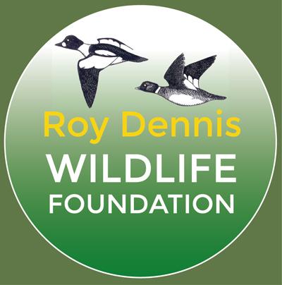 RDWF-logo-circle-web-1.jpg
