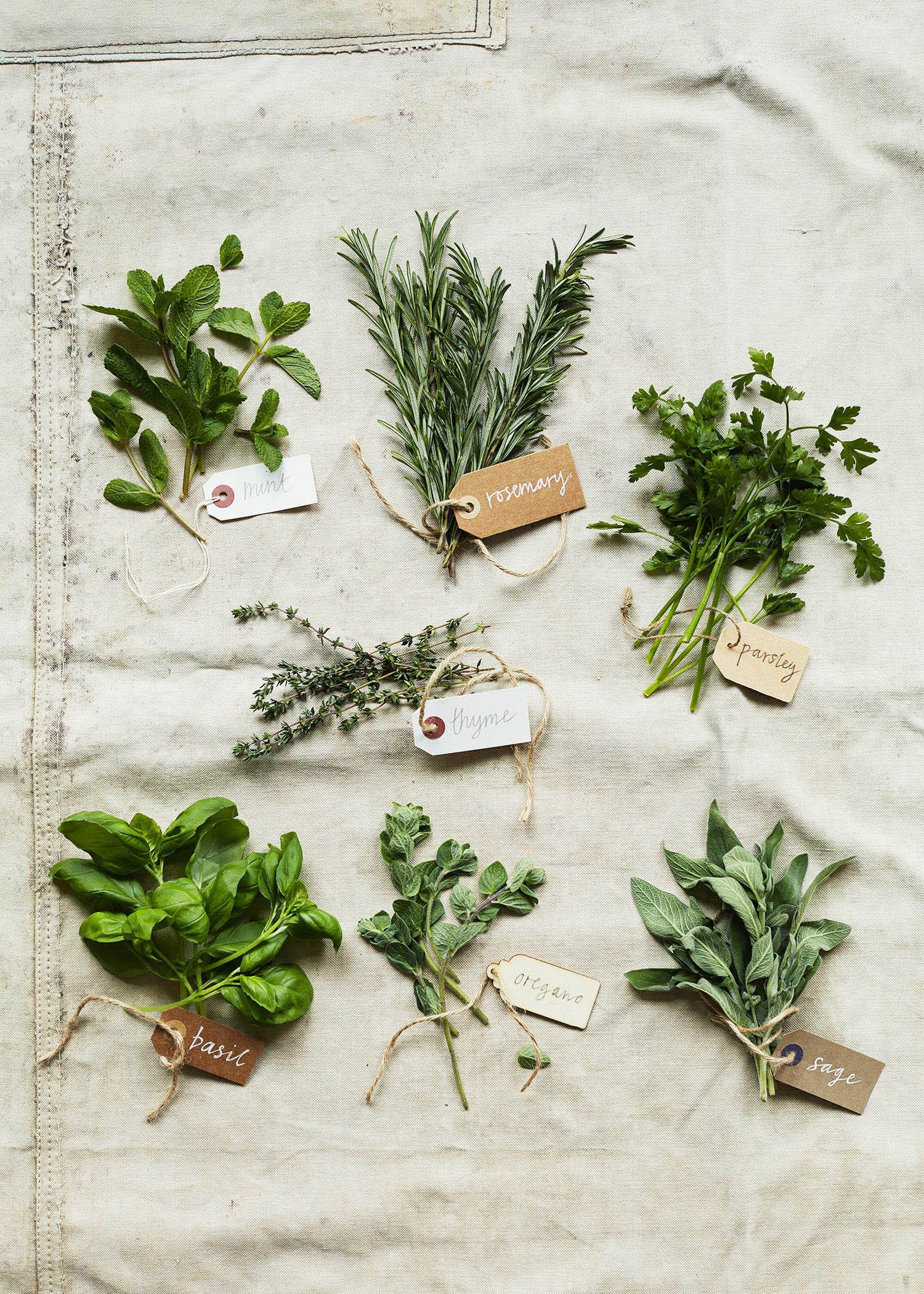 Herbs_011.jpg