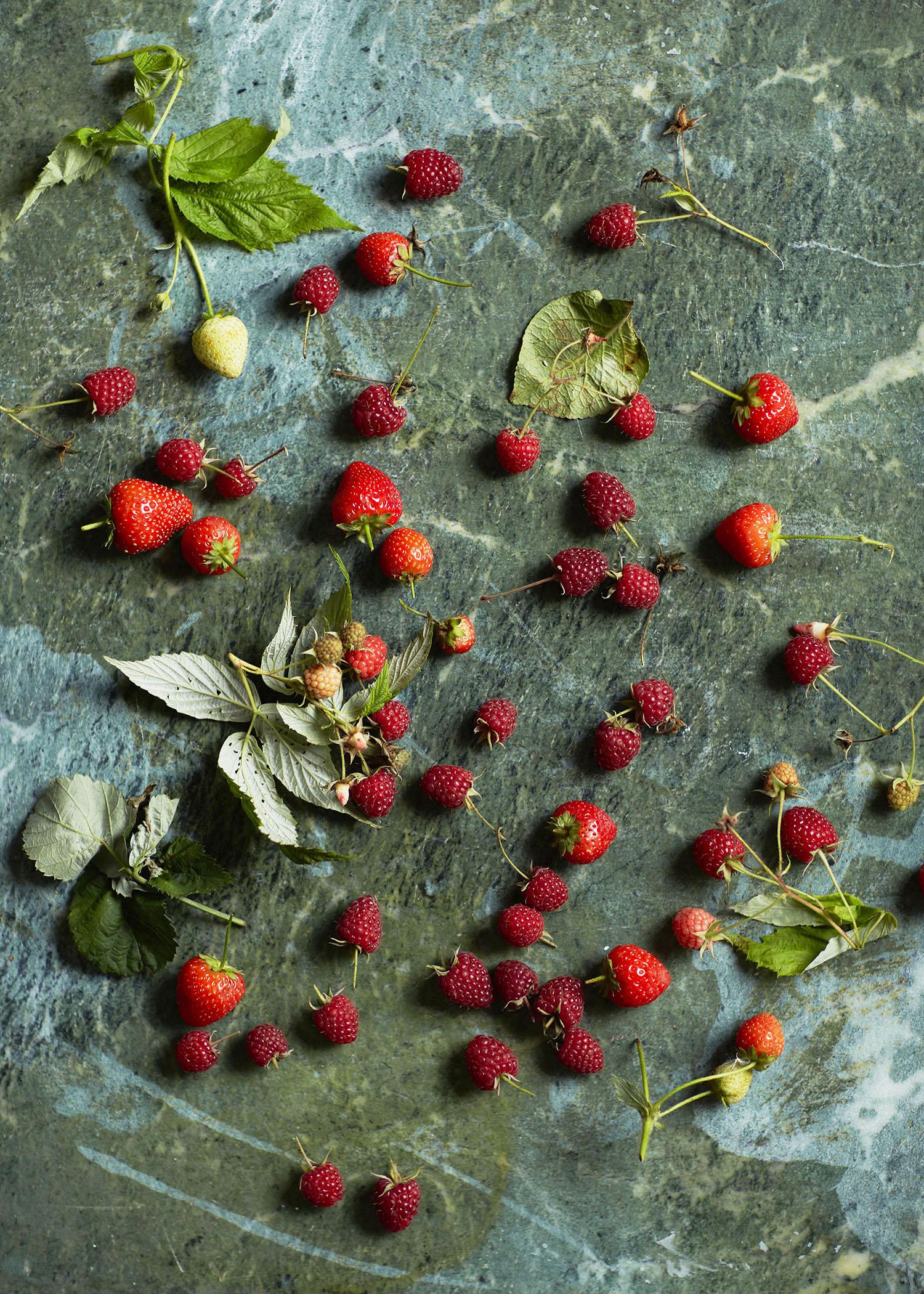 Berries_005.jpg