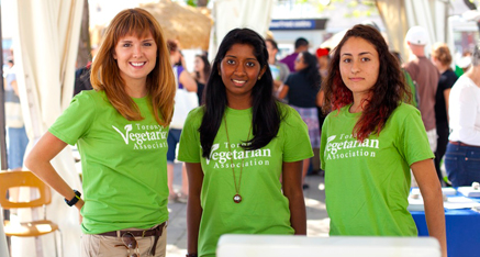 Toronto Vegetarian Association: Everything veg in Toronto! Events, groups, meet-ups and more!