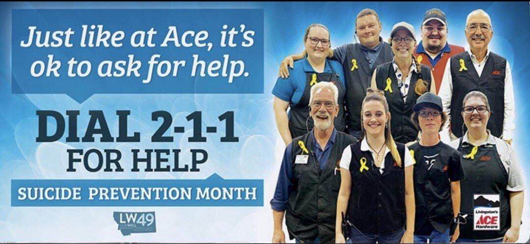 ACE Hardware BillBoard 89 South, Livingston, MT