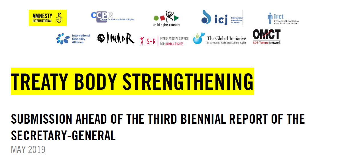 Image - Submission ahead of the 3 biennial report of the SG.PNG
